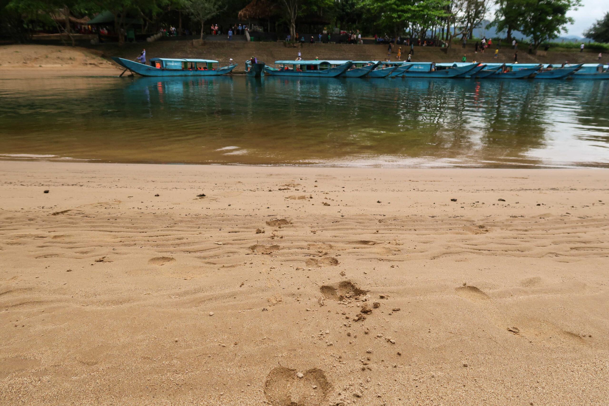 Obrazek przedstawia widok na ślady kopyt pozostawione na piasku przed jeziorem. W tle widoczne są łódki.